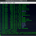 How to install apache from source in Centos 6.7